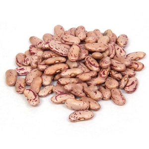Picture of Fine  Rajma  White 500 Gm Pouch