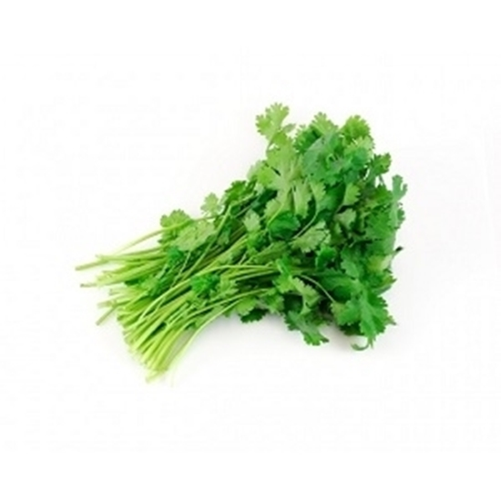 Picture of Coriander  1 nos
